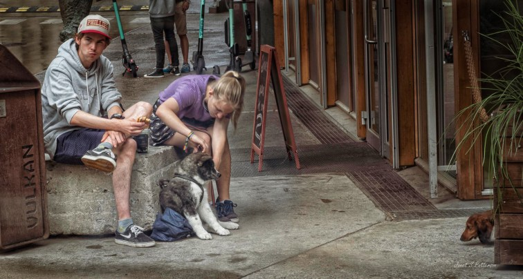 people, streetscape, dogs, Oslo, Norway