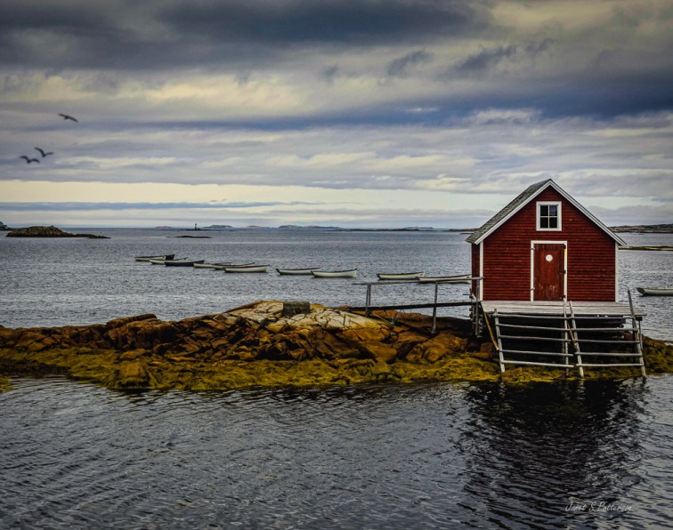 architecture, landscape, seascape, building, Fogo Island, Joe Batt's Arm, NL