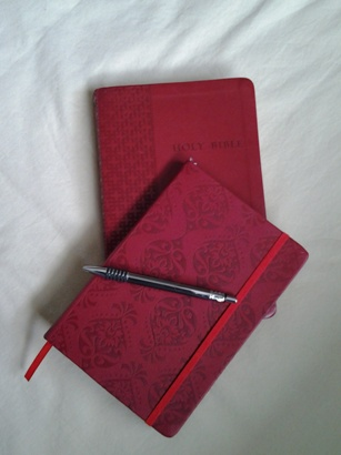 Bible and journal... both the same colour
