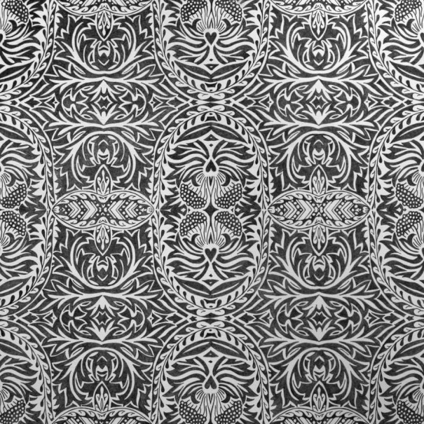 patterns of obsession drawing leaf flower by Janet Towbin Morris Mirror graphite on paper
