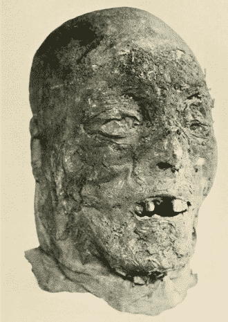 Mummified head that looks vaguely like a portrait of Henry Grey