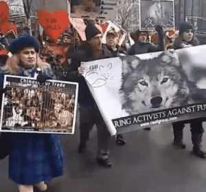 jane_unchained_jane_velez_mitchell_vegan_animal_rights