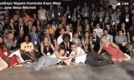 Vegans Dominate at Expo West