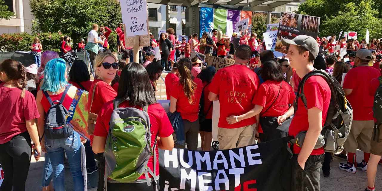 San Francisco March to Close all Slaughterhouses – Changing the World for Animals