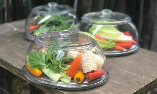 VeggiDome Brings Veggies Into Plain View…so You Will Eat Them!