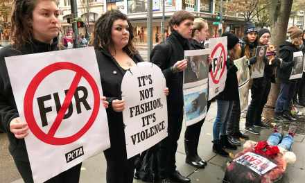 """Activists Stage """"Funeral"""" For The Victims Of The Fur Trade"""