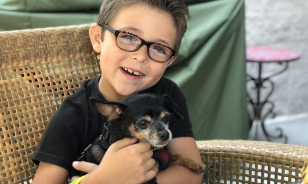 VeganEvan: The Kid Animal Rights Activist Who Is Wiser than Most Adults!!!