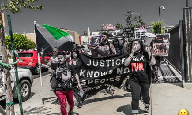 Activists Demonstrate Unity and Strength: The Official Animal Rights March Los Angeles!!!