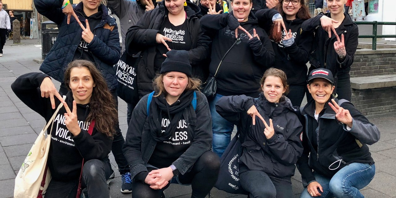 The Cube Of Truth In  Iceland!