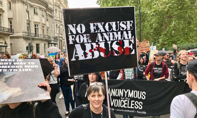 "London Animal Rights March! ""Don't Ask Us Why We're Vegan. Ask Yourselves Why You're Not!"