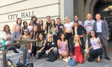 Fur Could be Banned in Los Angeles with Your Help!