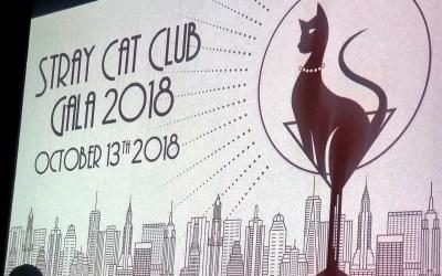 No Kill Nation: Stray Cat Alliance Gala!