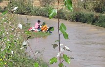 Women washing clothes in the Draa River in the Todras region.