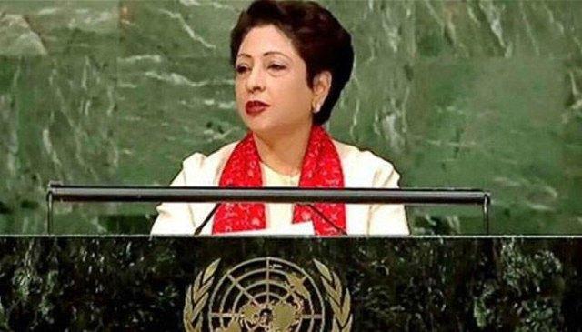 اقوام متحدہ نے پاکستان کو 2 اداروں کا رکن منتخب کرلیا