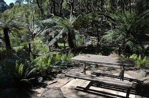 preston-falls-picnic-area