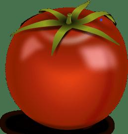 nutrition-rich tomato