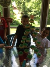 stefs_2014_cupcakes