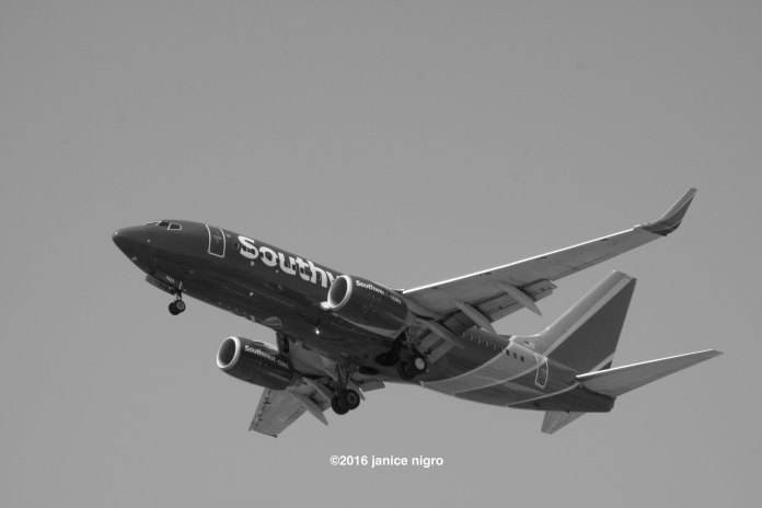 airplane BW 2321 copyright