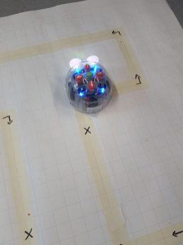 Lernroboter Blue-Bot