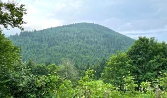 Jakże przyjemnie odciąć się od świata i zamieszkać w domku w górach, z widokiem na Bukówkę.