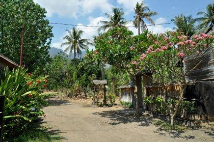 Oprócz głównej ulicy, to właśnie taki jest Pemuteran. Tu sobie przez 3 dni mieszkaliśmy.