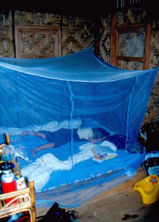 ... ale ma własną moskitierę.