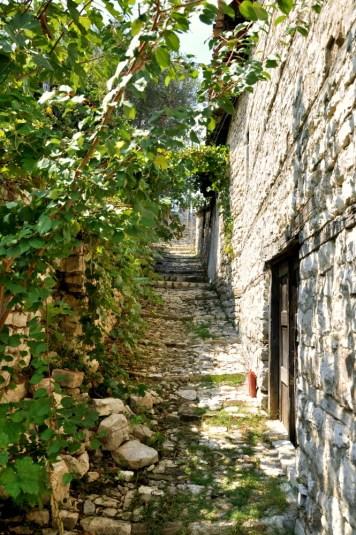 Wymarzony cień, zwłaszcza, jeśli w swej głupocie człowiek zwiedza Berat w sierpniowym skwarze, dokładnie w samo południe.