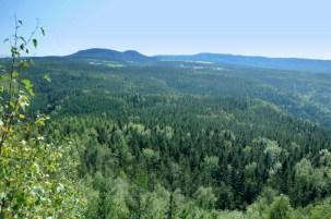 Božanovsky Špičak to najwyższa kulminacja skalna Broumovskych Sten. Widok na polską część Stołowych: Szczelińce od czeskiej strony.
