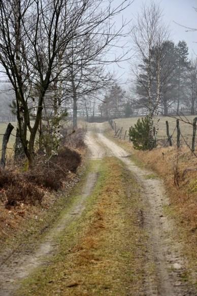 Pewnego mglistego poranka, przypadek nawet wstrzelił nas w św. Patryka, nadszedł czas na małą trasę na Kaszubach.