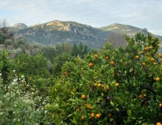 Mallorca – España
