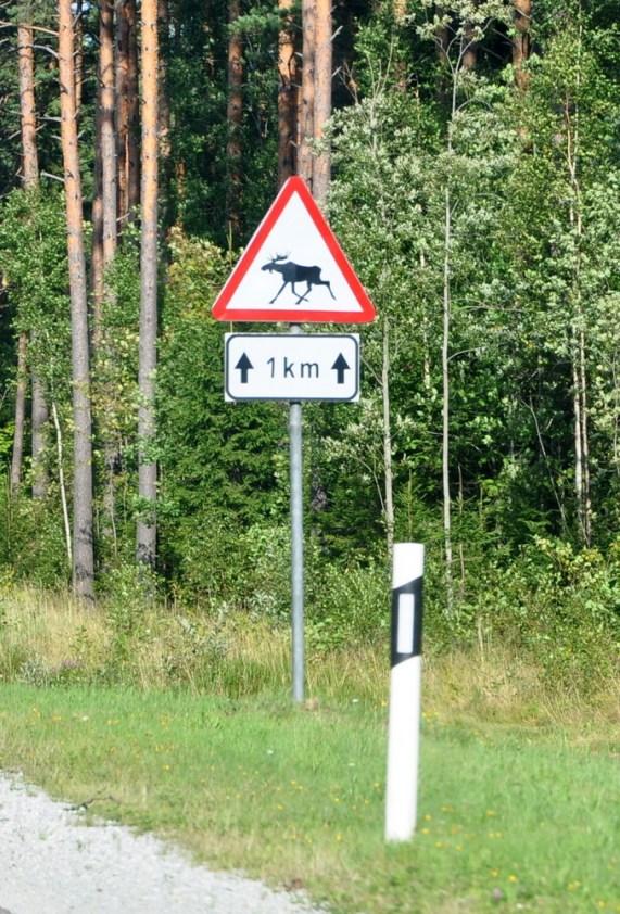 Pierwszy znak po przekroczeniu granicy z Estonią. To był najczęściej spotykany znak ;).
