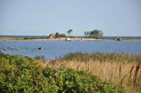 Nadal półwysep Parispea. Purekkari, najdalej wysunięty na północ przylądek Estonii, 1.5 km kamoli, głazów i dzikiej róży.