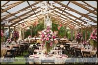 Beautiful Backyard Wedding  jan michele photography