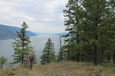 View on Lake Okanagan