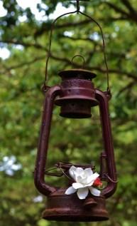Lantern Blooms (622x1024)