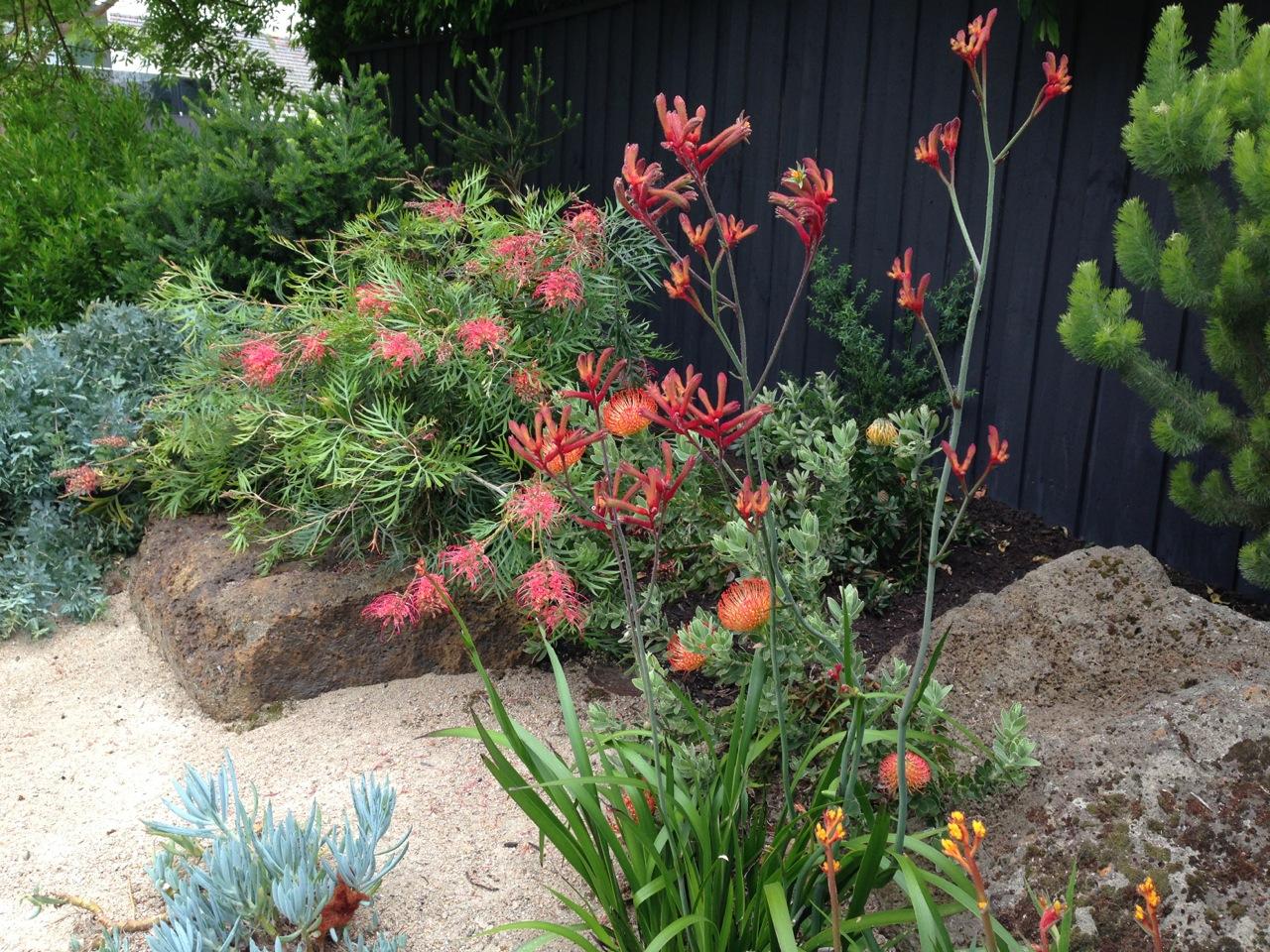 The Best Garden Designer In Australia? – Janna Schreier Garden Design
