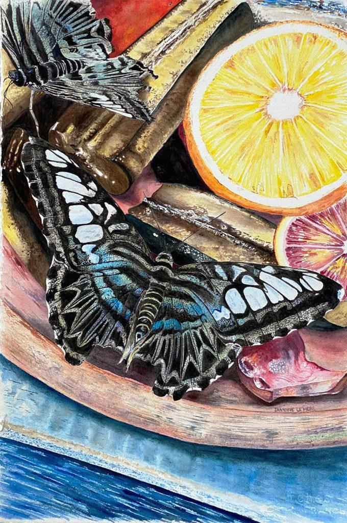 Butterflies, Watercolour, Nature