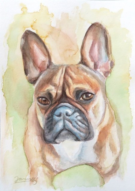 Momo, Französische Bulldogge, Aquarell Kunst Malerei