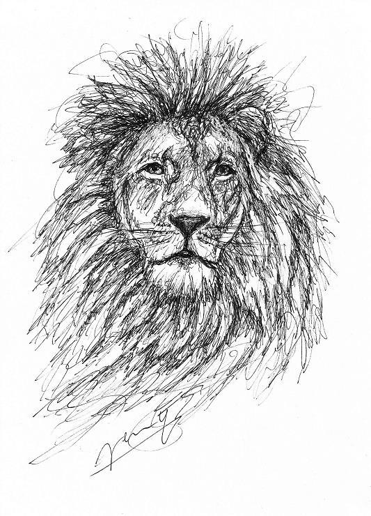 Löwe Scribble Zeichnung Kunst