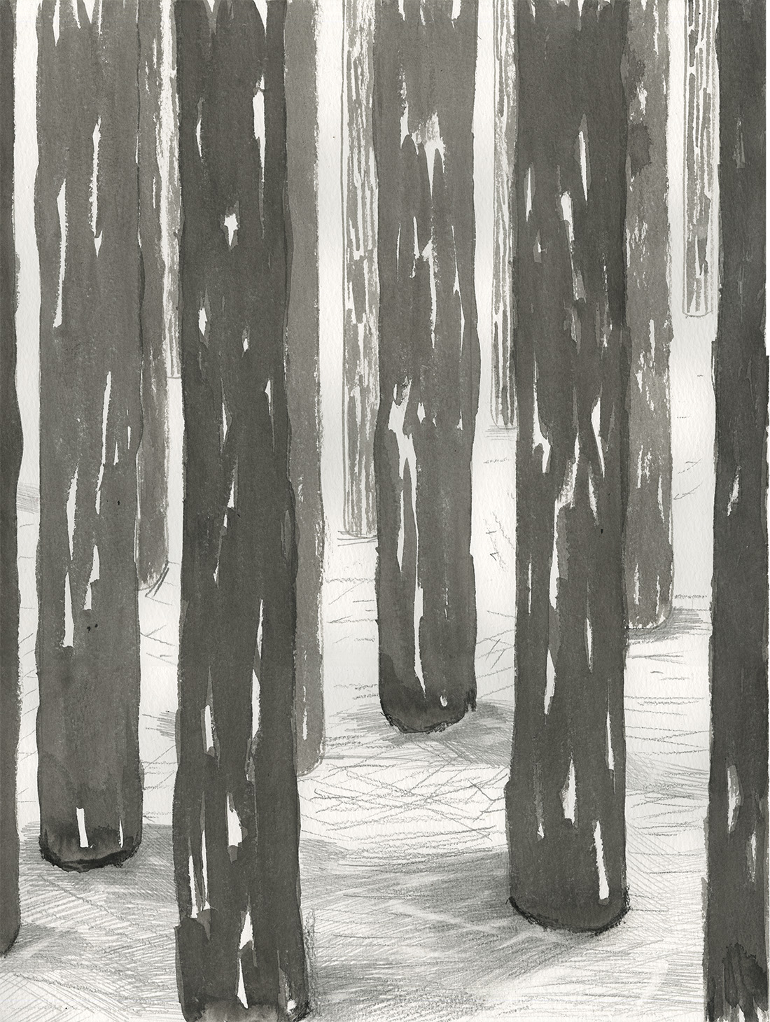 forests2