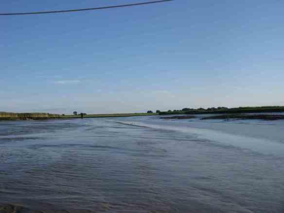 Petkum bei Niedrigwasser