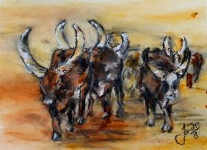 Juba Cattle