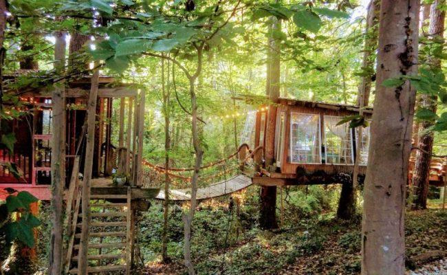 Take A Tour Of This Amazing Airbnb Atlanta Treehouse