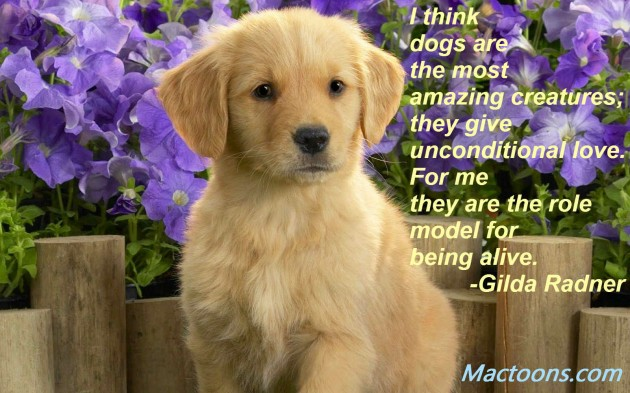 puppy with flowers and quote