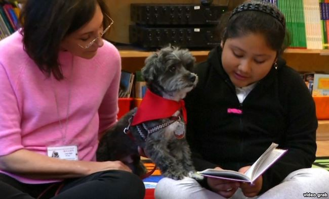 Dogs teaching kids how to read