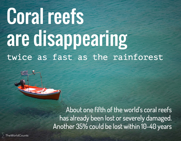 """This informational image is a photo of a boat on the water, and the words: """"Coral reefs are disappearing twice as fast as the rainforest. About one fifth of the world's coral reefs has already been lost or severely damaged. Another 35% could be lost within 10-40 years."""""""