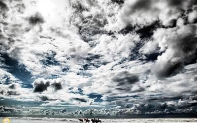 Amazones in zee