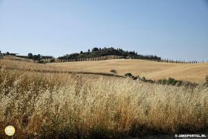 Landschap bij Magliano