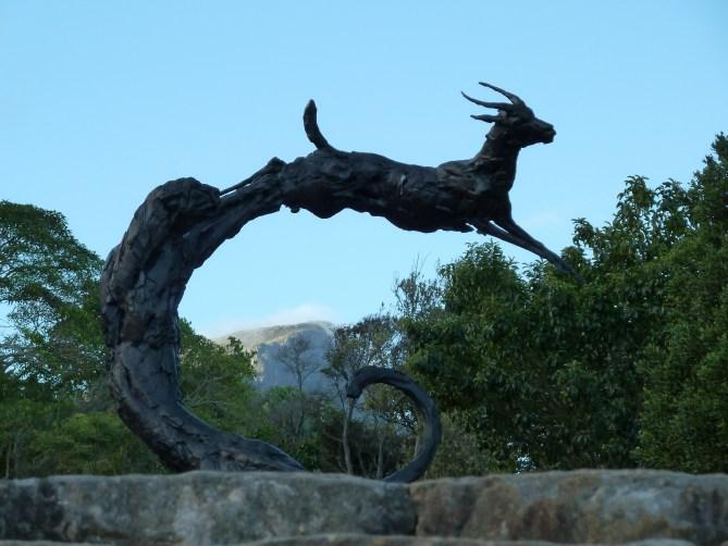 Kristenbosch Kaapstad Zuid-Afrika