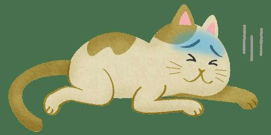 「猫 病気」の画像検索結果